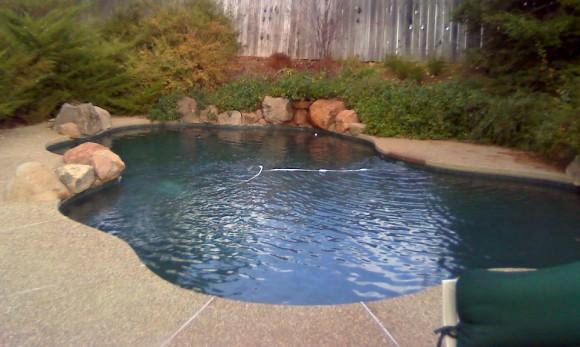 cal-backyard